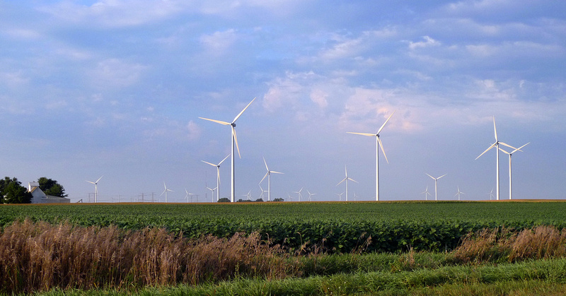 Wind mills in central Illinois